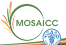 logo_Mosaicc.png